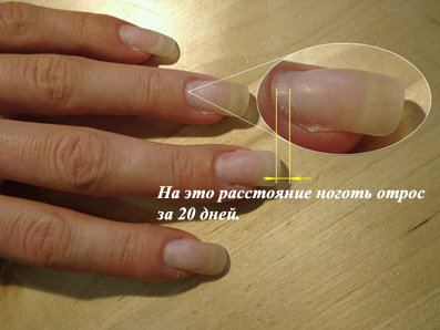 Как сделать акриловые ногти фото 287